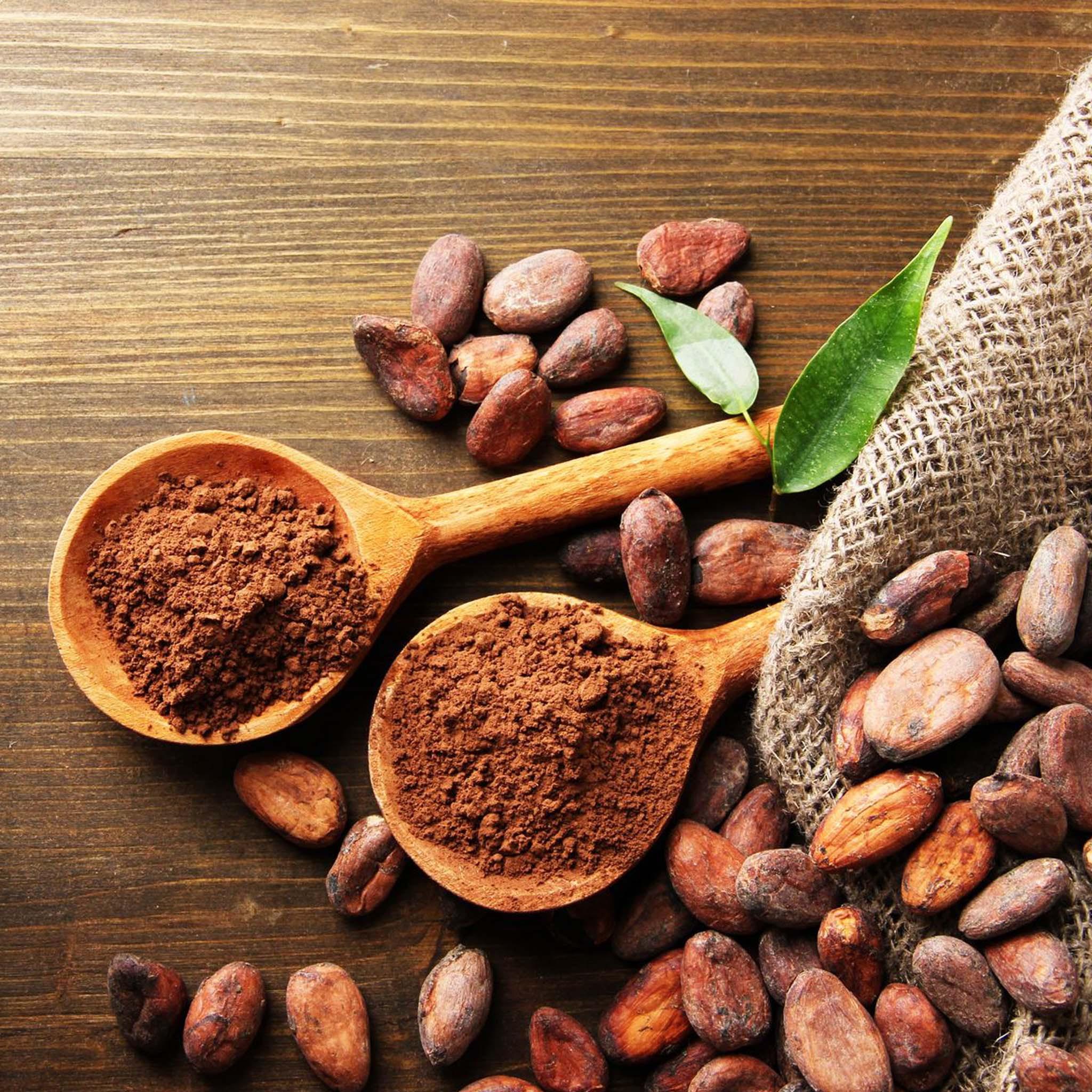 Raw Cacao Powder Cake Recipes